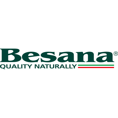 Besana Group